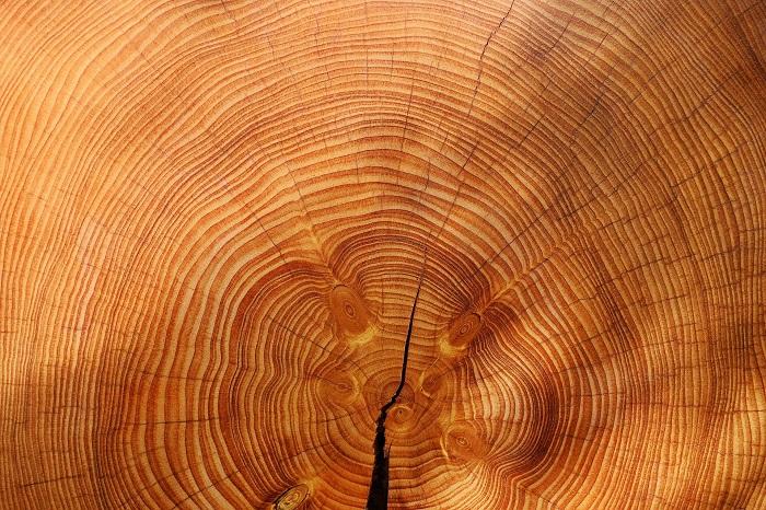 Kotol na drevo, ktorý zahreje